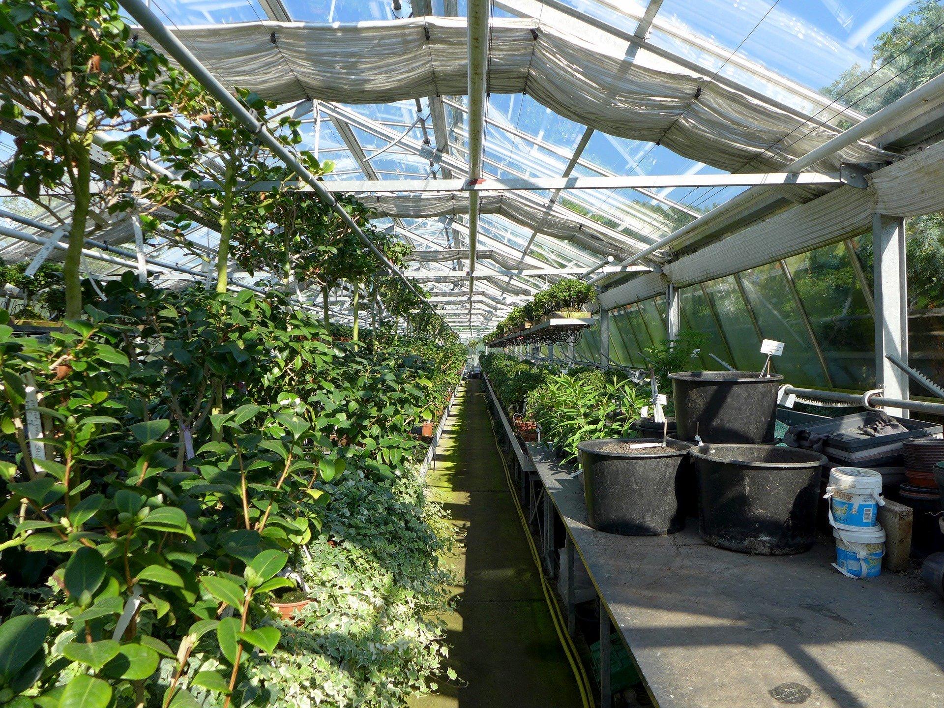 Haben Gartencenter Geöffnet